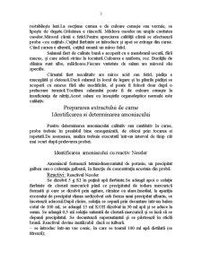 Tehnologia Carnii - Pagina 3