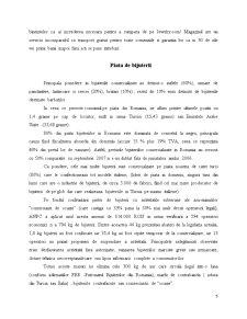 Analiza Comparativa a Site-urilor de Comert Electronic care Vizeaza Vanzarea de Bijuterii - Pagina 5