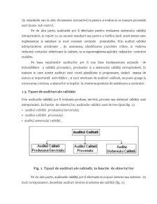 Aspecte Practice Privind Auditul Sistemelor Calității - Pagina 3