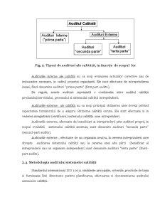 Aspecte Practice Privind Auditul Sistemelor Calității - Pagina 4