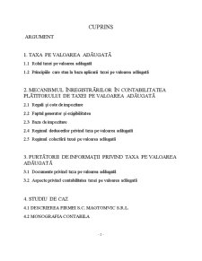 Contabilitatea Taxei pe Valoarea Adăugată - Pagina 2