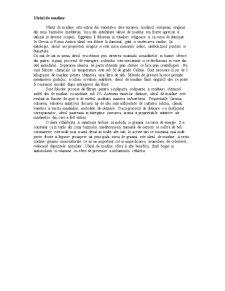 Tehnologia Obtinerii Uleiului Comestibil - Pagina 3