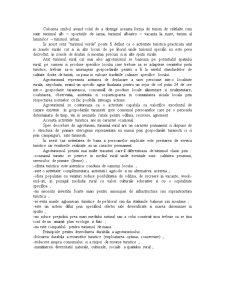 Turismul Rural - Curs 1 - Pagina 2