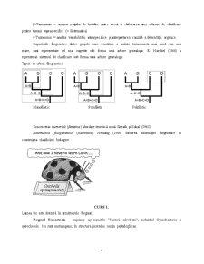 Nevertebrate - Pagina 5