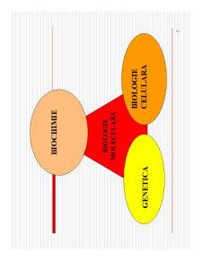 Proprietati Generale Aminoacizi - Pagina 2