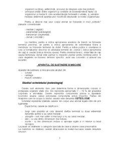 Anatomie - Osteologie, Artrologie și Miologie - Pagina 3