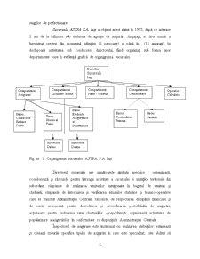 Studiu de Caz - ASTRA Asigurari - Pagina 5