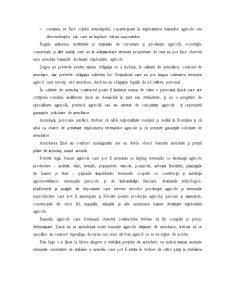 Contractul de Arendare - Pagina 2