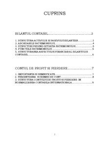 Bilantul Contabil, Contul de Profit si Pierdere - Pagina 2