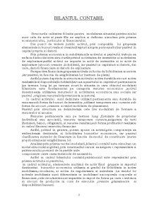 Bilantul Contabil, Contul de Profit si Pierdere - Pagina 3