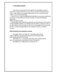 Plan de Afaceri Livada de Nuci - Pagina 2