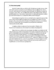 Plan de Afaceri Livada de Nuci - Pagina 3