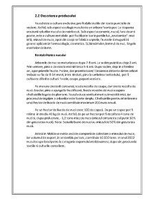Plan de Afaceri Livada de Nuci - Pagina 4
