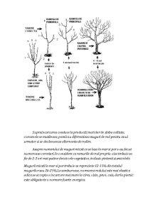 Pomicultura - Pagina 3