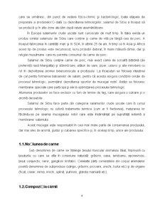Tehnologia de Fabricare a Salamului de Sibiu - Pagina 4