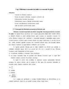 Macroeconomie și Politici Macroeconomice - Pagina 5