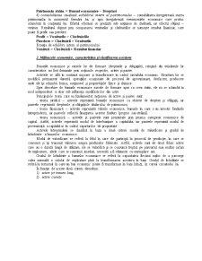 Contabilitate - Generalitati - Pagina 5