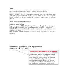 Aplicatii Multimedia - Flash - Pagina 3