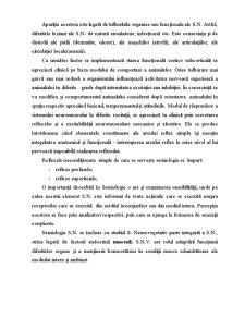Sistemul Nervos la Cabaline - Pagina 4