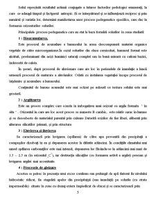 Lista Unitatilor de Sol din Arealul Studiat - Pagina 4