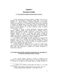 Protecția Națională și Internațională a Drepturilor Omului - Pagina 2