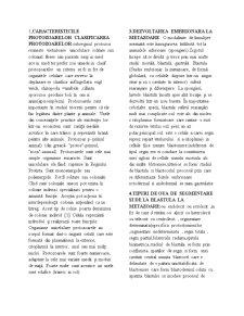 Biologie Animala - Pagina 1