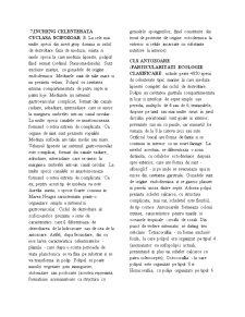 Biologie Animala - Pagina 4