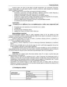 Audit Financiar Contabil - Pagina 3