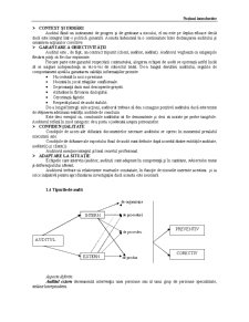 Audit Financiar Contabil - Pagina 5