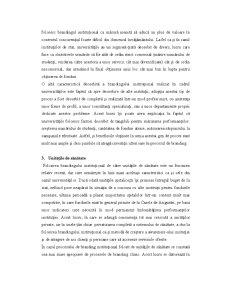 Branding Instituțional - Pagina 4