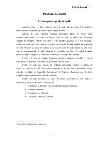 Probe de Audit - Pagina 2