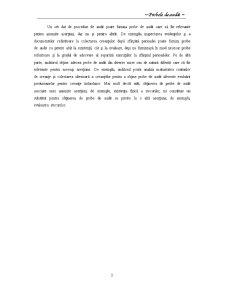 Probe de Audit - Pagina 4