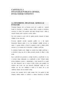 Finanțele Publice - Pagina 4