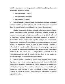 Modele de Organizare și Evidență a Gestiunii - Pagina 4