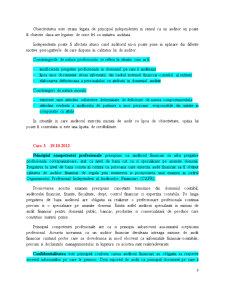 Audit Financiar - Pagina 3