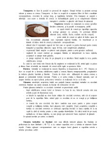 Tehnologia de Preparare a Torturilor - Pagina 3