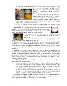 Tehnologia de Preparare a Torturilor - Pagina 4