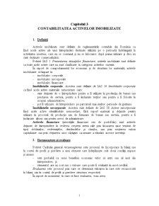 Capitolul 3 - Contabilitatea Activelor Imobilizate - Pagina 1