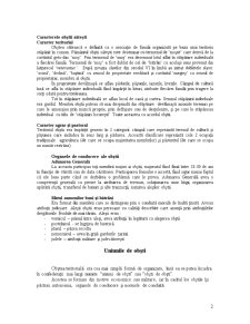 ISDR Curs 3 - Pagina 2