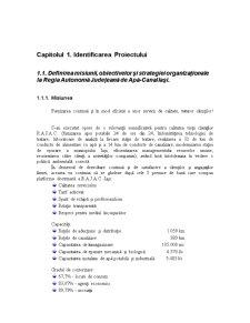 Analiza Sistemelor Informationale intr-o Firma - Pagina 1