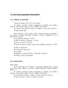 Analiza Sistemelor Informationale intr-o Firma - Pagina 4