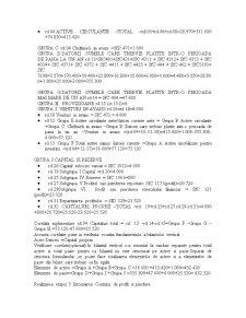 Situatiile Financiare - Pagina 5