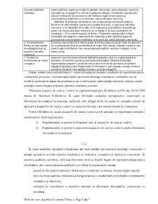 Auditul în Comerț - Pagina 4