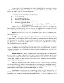 Structura Industriei de Catering - Pagina 4