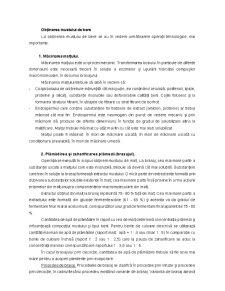 Tehnologia Berii - Pagina 3
