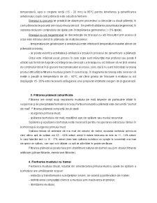 Tehnologia Berii - Pagina 5