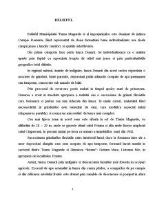 Turnu Magurele - Oras Dunarean - Pagina 4