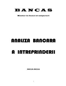 Analiza Bancara a Inteprinderii - Pagina 1
