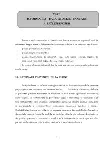 Analiza Bancara a Inteprinderii - Pagina 2