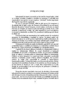 Deturnarea de Fonduri - Pagina 2